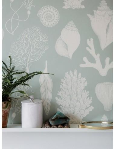 Katie Scott Wallpaper Shells Aqua